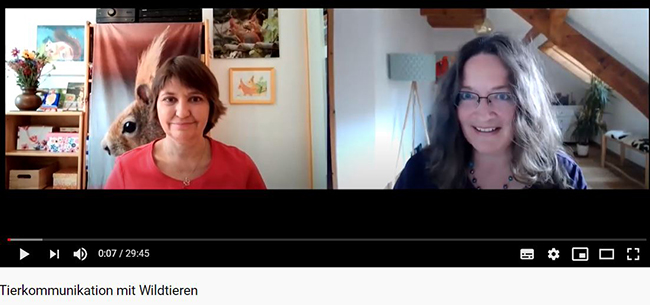 Wildtierflsterei Interview mit Pia fr blog